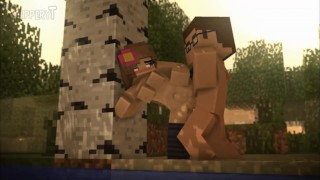 Minecraft compilation